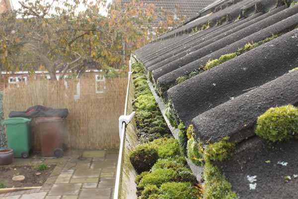 Domestic Gutter Cleaning Southampton Domestic Gutter